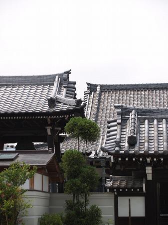 shinhukuji51[1].jpeg